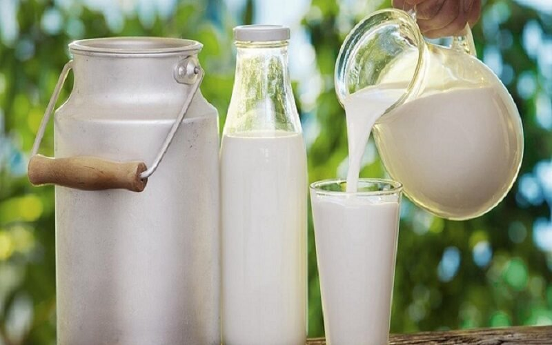 Nên hạn chế dùng sữa và các thực phẩm có thành phần là sữa khi bị mụn